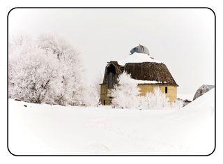 Hoar frost3